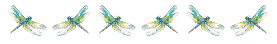 Dragonfly banner